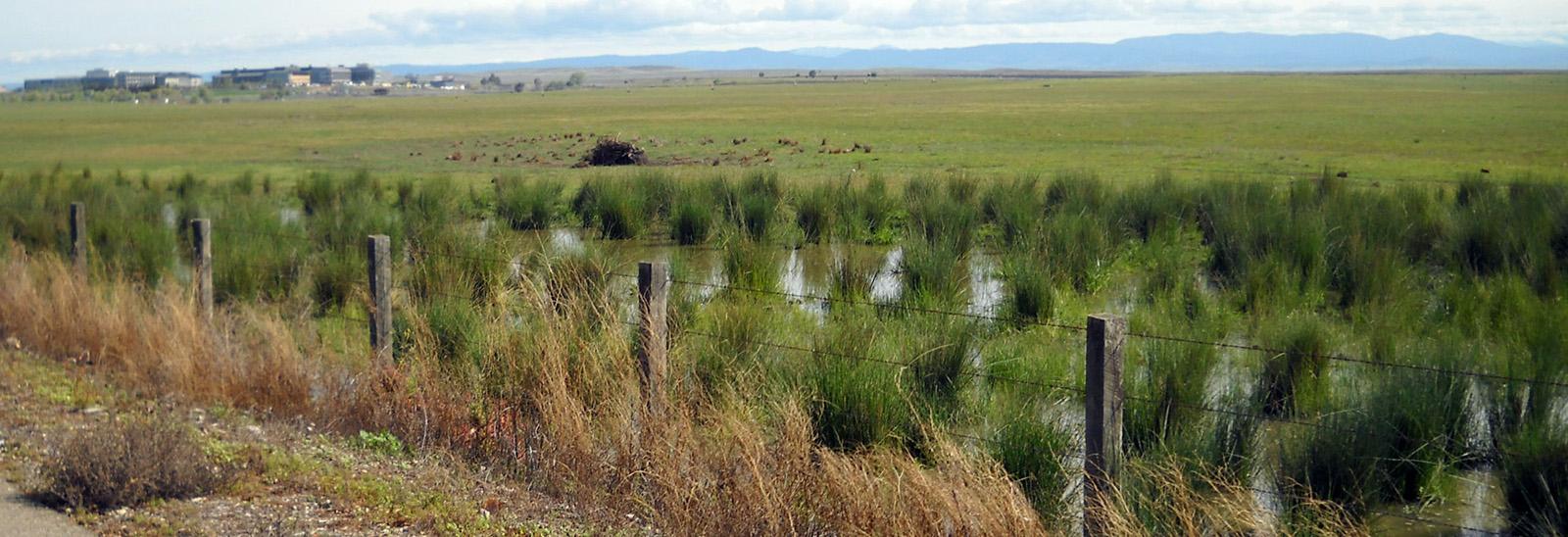 CEQA, Environmental Planning, Environmental Protection